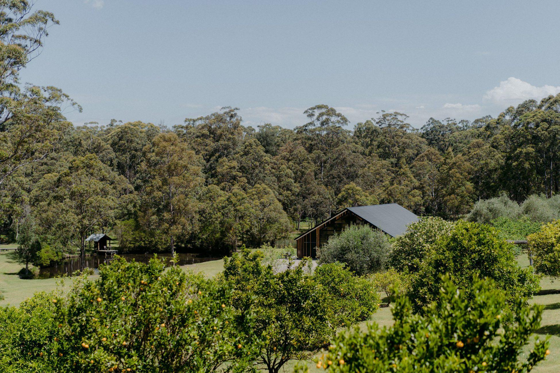 Wedding Destination, NSW on stunning vineyard estate